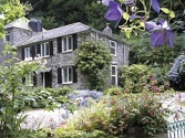 Polperro Cottage Lets